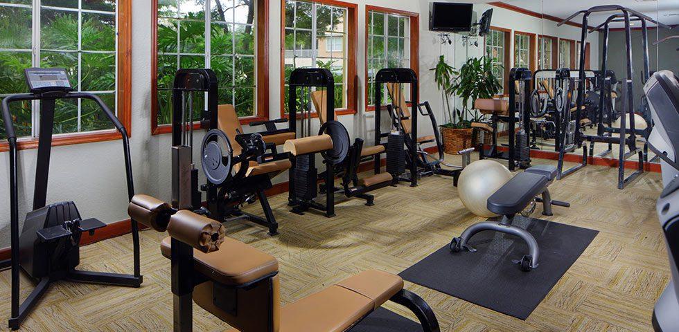 mantenimiento gimnasio comunidad propietarios - sated